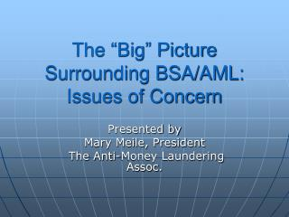 The  Big  Picture Surrounding BSA