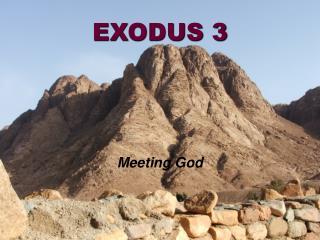 EXODUS 3