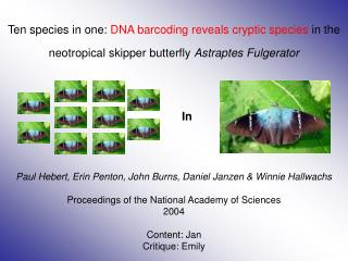 Ten species in one: DNA barcoding reveals cryptic species in the neotropical skipper butterfly Astraptes Fulgerator