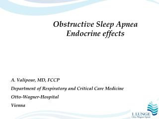 Obstructive Sleep Apnea Endocrine effects