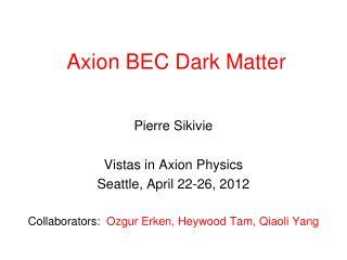 Axion BEC Dark Matter