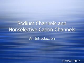 Sodium Channels and Nonselective Cation Channels