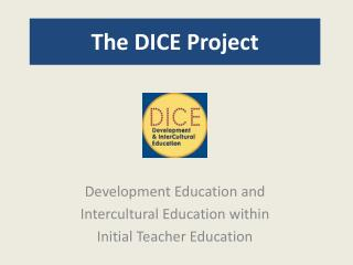 The DICE Project
