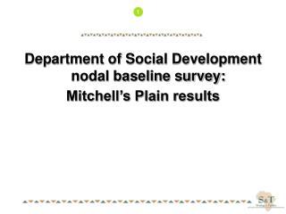 Department of Social Development nodal baseline survey: Mitchell s Plain results