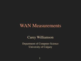 WAN Measurements