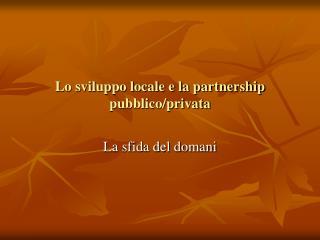 Lo sviluppo locale e la partnership pubblico