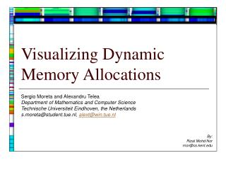 Visualizing Dynamic Memory Allocations