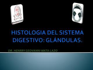HISTOLOGIA DEL SISTEMA DIGESTIVO: GL NDULAS.