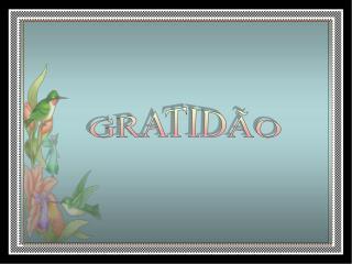 GRATID O