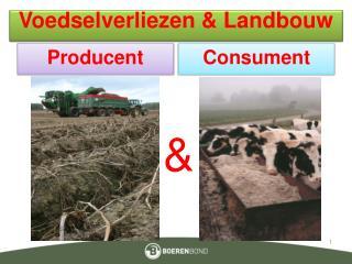 Voedselverliezen  Landbouw