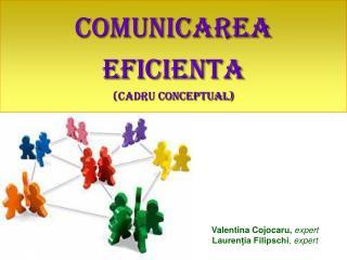 COMUNICAREA EFICIENTA cadru conceptual