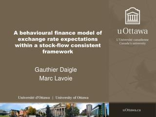A behavioural finance model of exchange rate expectations within a stock-flow consistent framework