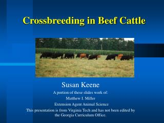 Crossbreeding in Beef Cattle