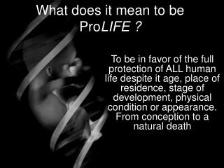 What does it mean to be ProLIFE