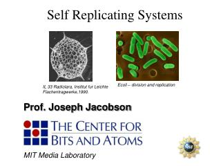 Self Replicating Systems