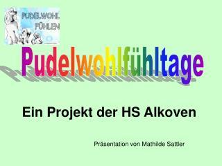 Ein Projekt der HS Alkoven