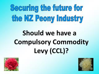 Should we have a Compulsory Commodity Levy CCL