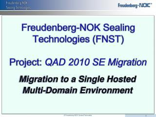Freudenberg-NOK Sealing Technologies FNST   Project: QAD 2010 SE Migration