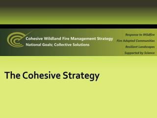 The Cohesive Strategy