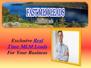 Real Time MLM Leads