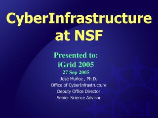 CyberInfrastructure  at NSF