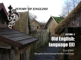 LECTURE  3 Old English: language II