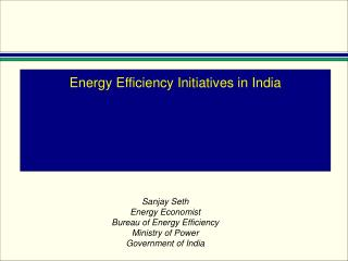 Energy Efficiency   the Indian experience