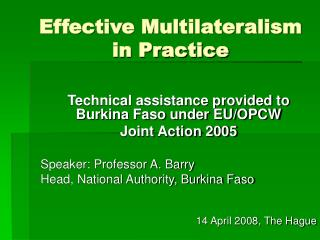 Effective Multilateralism in Practice