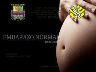 EMBARAZO NORMAL