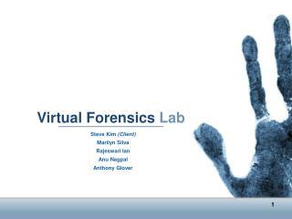 Virtual Forensics Lab