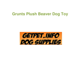 Grunts Plush Beaver Dog Toy