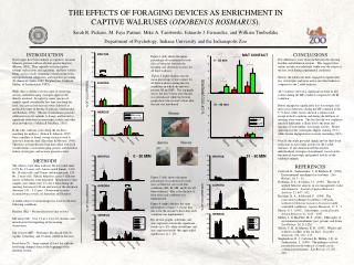 THE EFFECTS OF FORAGING DEVICES AS ENRICHMENT IN CAPTIVE WALRUSES ODOBENUS ROSMARUS. Sarah R. Pickens, M. Faye Parmer, M
