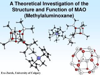 A Theoretical Investigation of the Structure and Function of MAO Methylaluminoxane