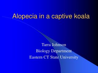 Alopecia in a captive koala