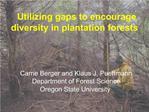 Utilizing gaps to encourage diversity in plantation forests