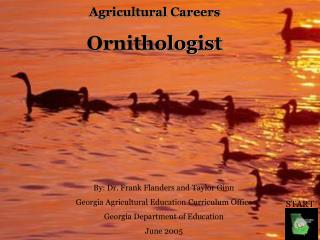 Agricultural Careers Ornithologist