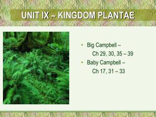UNIT IX   KINGDOM PLANTAE