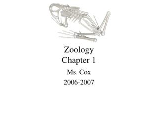 Zoology Chapter 1