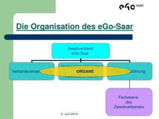 Die Organisation des eGo-Saar