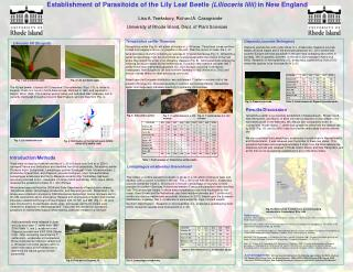 Establishment of Parasitoids of the Lily Leaf Beetle Lilioceris lilii in New England    Lisa A. Tewksbury, Richard A. Ca