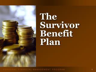 The Survivor Benefit Plan