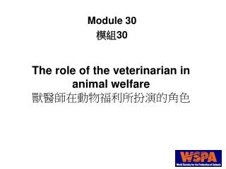 The role of the veterinarian in animal welfare