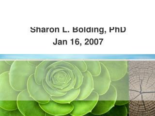 Semantics Overview Sharon L. Bolding, PhD Jan 16, 2007