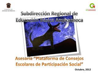 Asesor a  Plataforma de Consejos Escolares de Participaci n Social