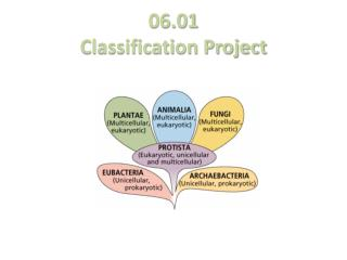 06.01 Classification Project