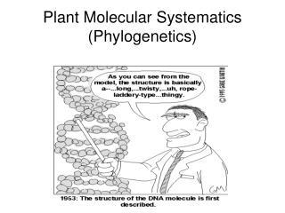 Plant Molecular Systematics Phylogenetics
