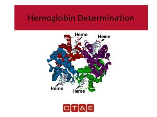 Hemoglobin Determination