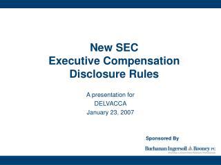 New SEC  Executive Compensation  Disclosure Rules