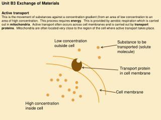 Unit B3 Exchange of Materials