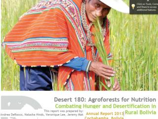 Desert 180 Operations annual progress report 2012